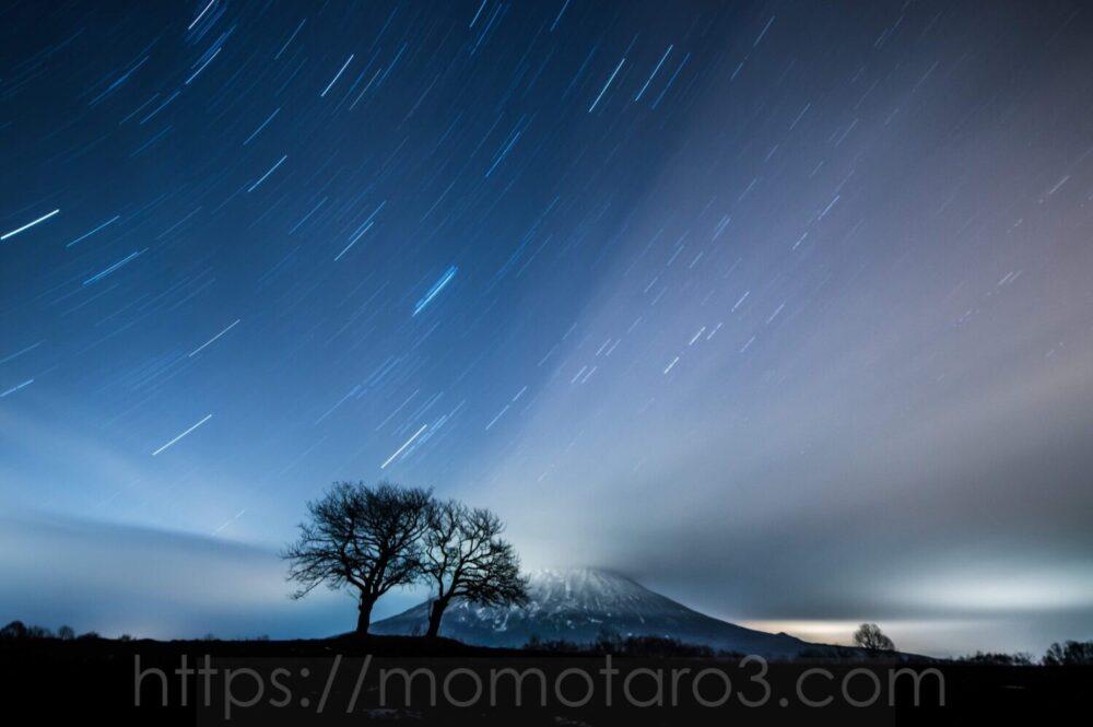 双子のさくらんぼの木、北海道、ニセコ